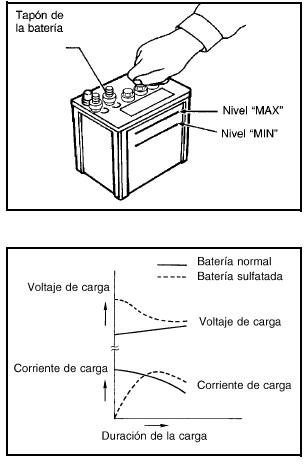 """Esto también se aplica a baterías identificadas como """"de bajo mantenimiento"""" y """"sin mantenimiento""""."""